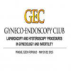 Gyneco-Endoscopy Club: Laparoscopy and Hysteroscopy Procedures in Gynecology and Infertility