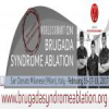 World Summit on Brugada Syndrome Ablation
