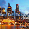 Annual Congress On Cell Science, Stem Cell Biology And Therapeutics 2017 during Nov 16-17, 2017 in Atlanta,USA