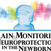 Brain Monitoring and Neuroprotection in the Newborn, 2017 Kerry