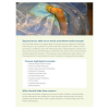 AAOS Wrist and Elbow Arthroscopy and Related Procedures