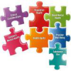 Integrated Behavioral Healthcare: Tough Issues in Integrating Care