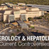 4th Gastroenterology and Hepatology Update: Debates on Current Controversies